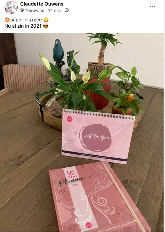 Review Just Be You Planner:Agenda 2021