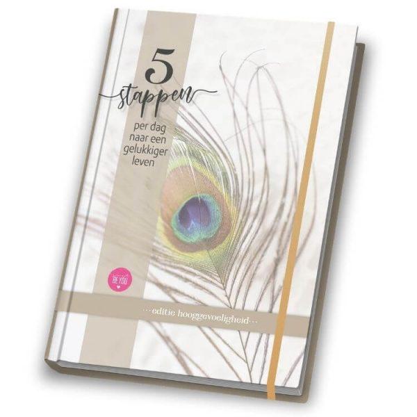 Hooggevoeligheid - Boek 5 stappen per dag