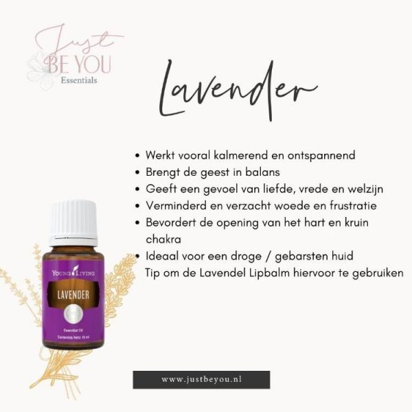 Just Be You Essentials Lavender